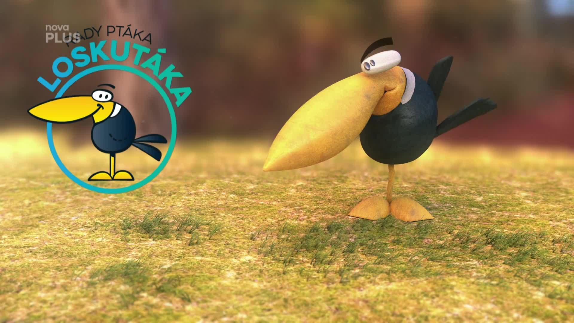 Rady ptáka Loskutáka přinesou hodně neotřelé nápady. Podívejte se, na co se můžete těšit