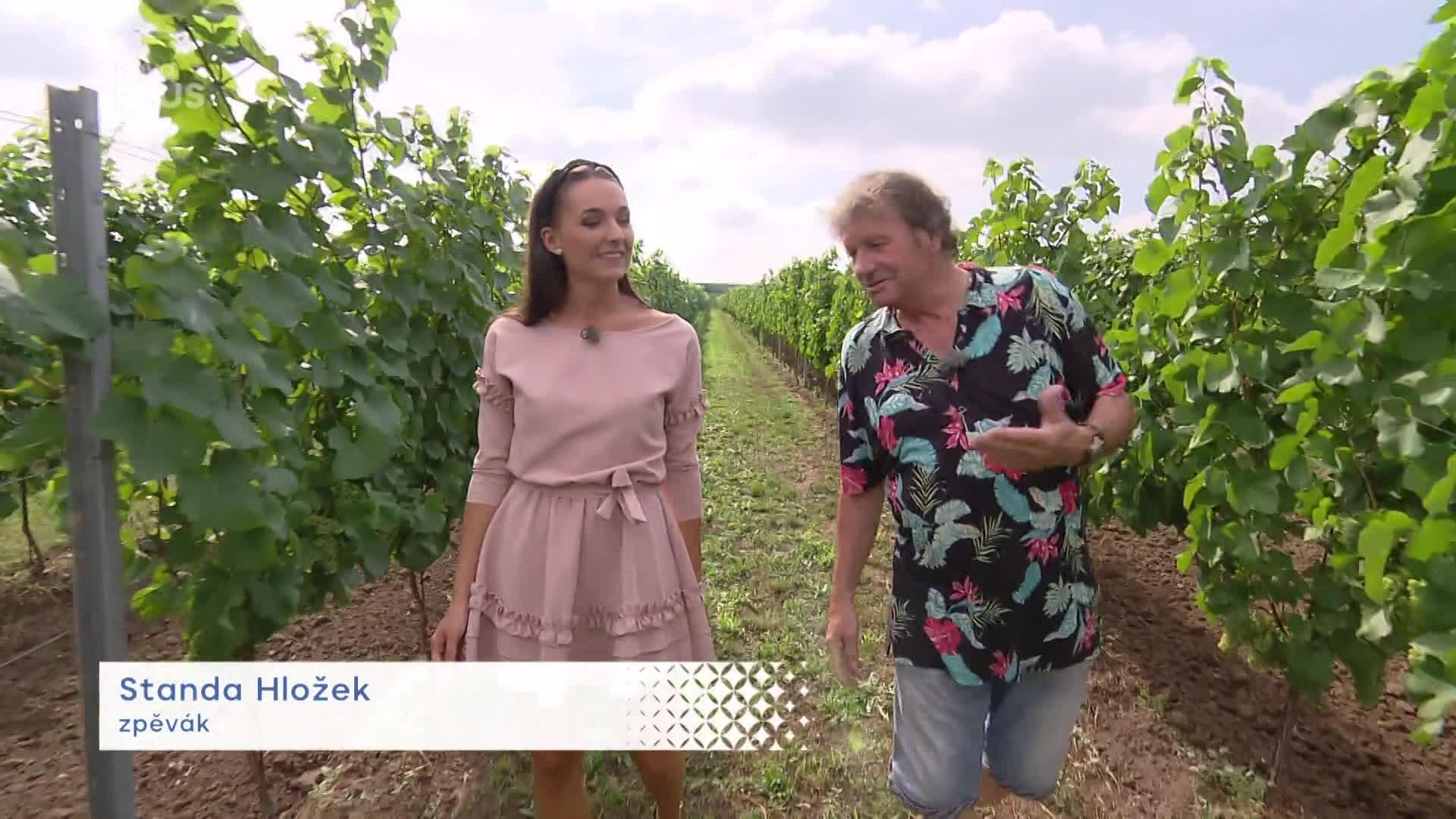 Posezení ve sklípku. Standa Hložek zahájil s kamarády začátek vinařské sezóny