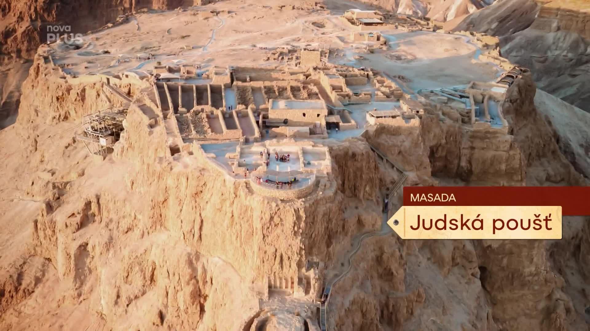 Vědecký úspěch: Izraelští odborníci vypěstovali vyhynulý datlovník!